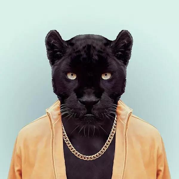 Spirit of the Panther
